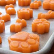 Frozen Carrot-Apple Dog Treats